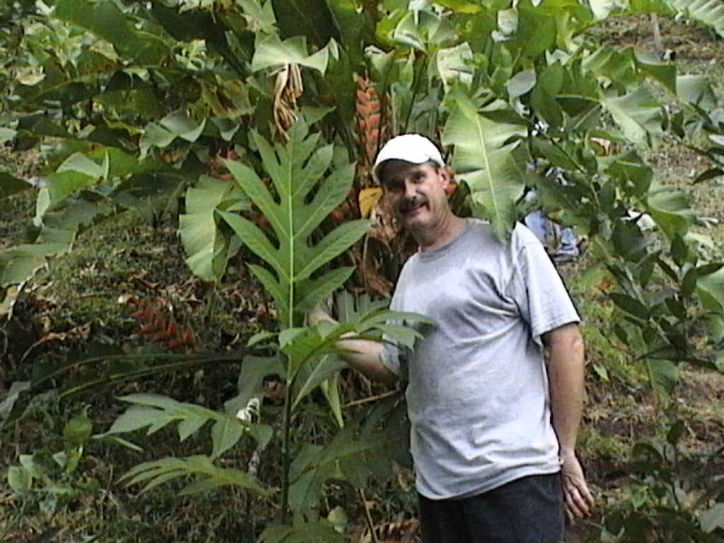 Paul standing next to a young Breadfruit beginning to reach for the sky.